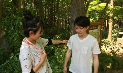 takao-shichaku1