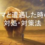 【クマ遭遇対策】日本で登山中に遭遇するクマは2種類!それぞれの特徴や行動形態を知ろう