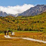 【保存版】東京から日帰りで行ける!10月にオススメの紅葉の山17選